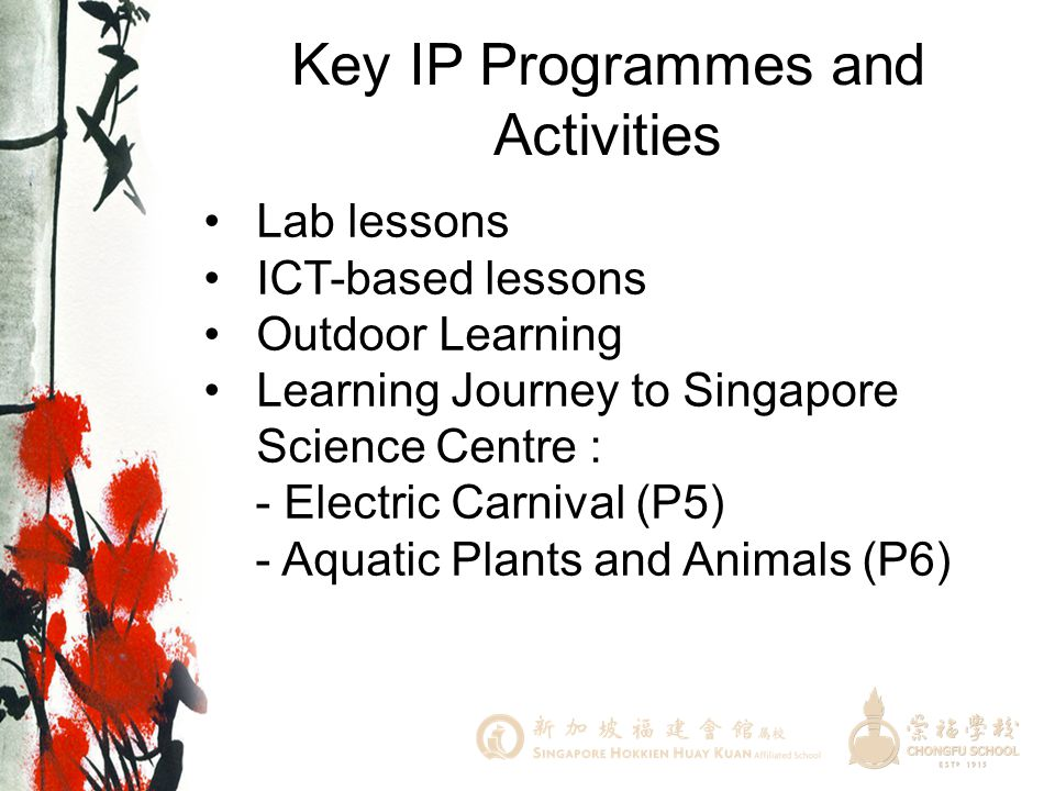 Key IP Programmes and Activities