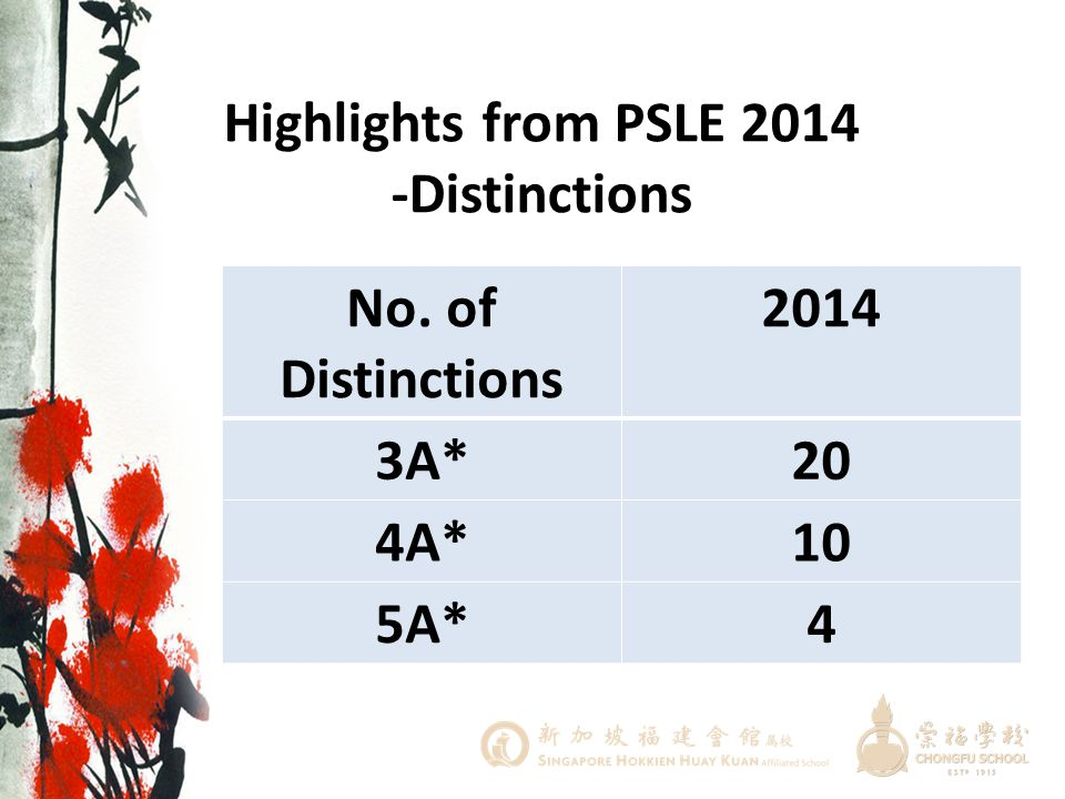 Highlights from PSLE 2014 -Distinctions