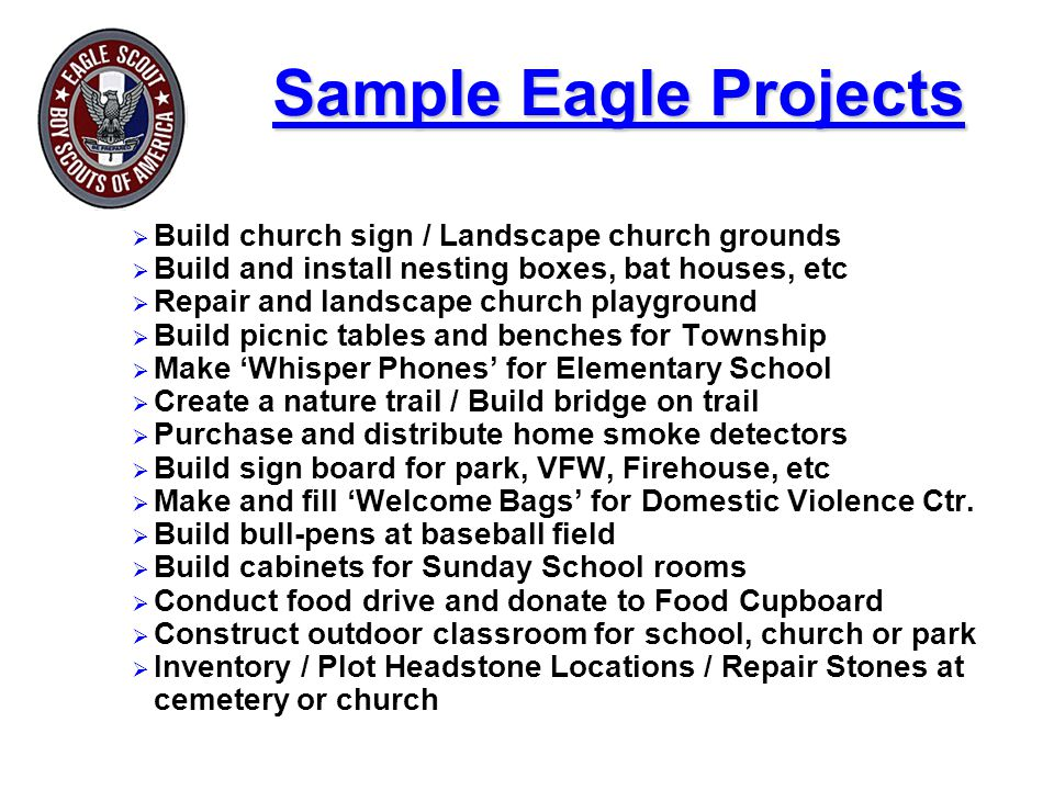 Sample Eagle Projects Build church sign / Landscape church grounds. Build and install nesting boxes, bat houses, etc.