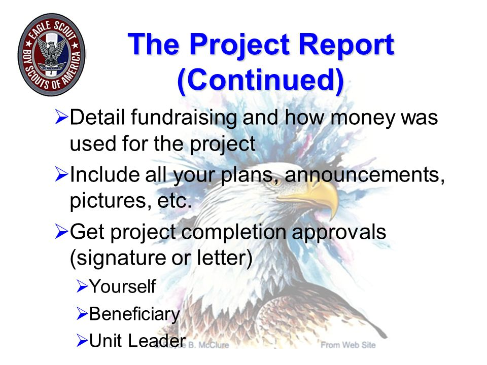 The Project Report (Continued)