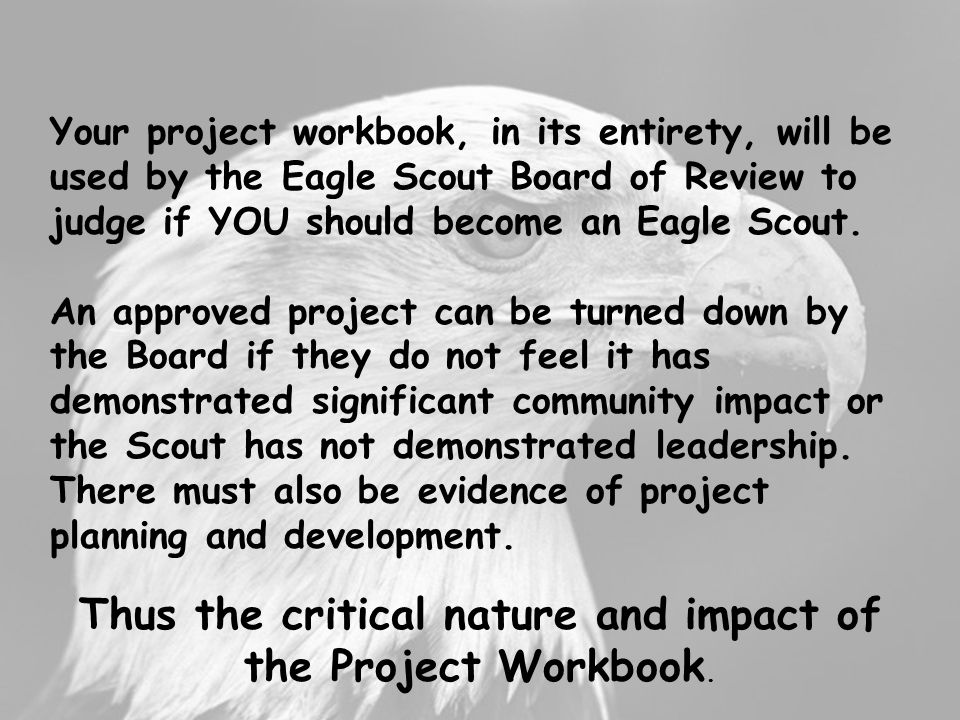 Thus the critical nature and impact of the Project Workbook.