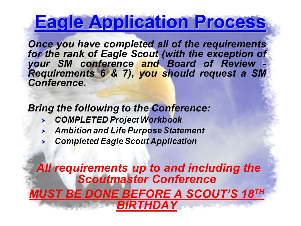 Eagle Application Process