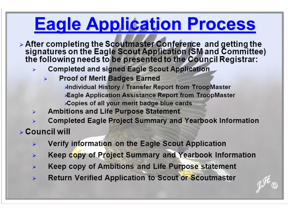 eagle life purpose essay Eagle scout service project workbook – october 2015 printing –  one of your  first steps after earning the life scout award is to obtain a copy of the boy scouts   planning, coordinating and executing the project and writing the final report   the purpose of this discussion is to make sure that your idea for.