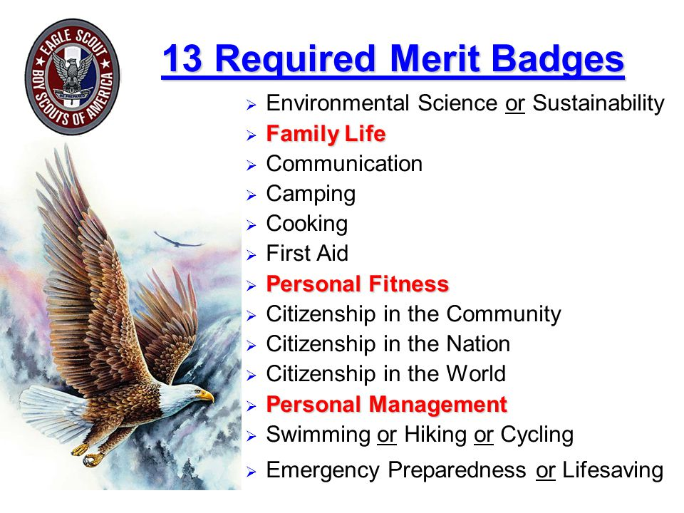 13 Required Merit Badges Environmental Science or Sustainability. Family Life. Communication. Camping.