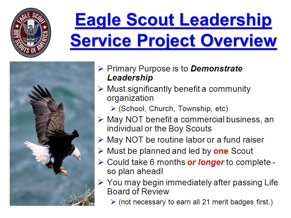 Eagle Scout Leadership Service Project Overview
