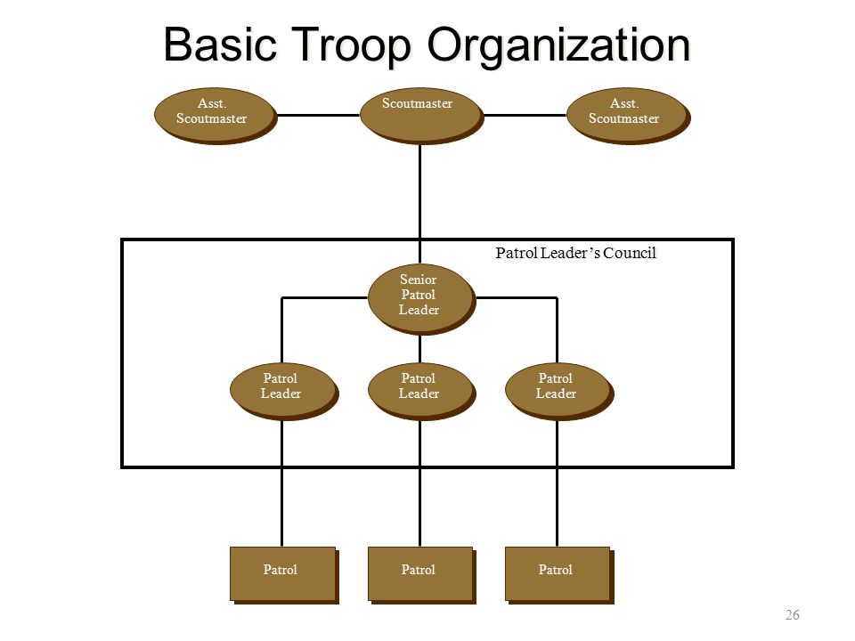 Basic Troop Organization