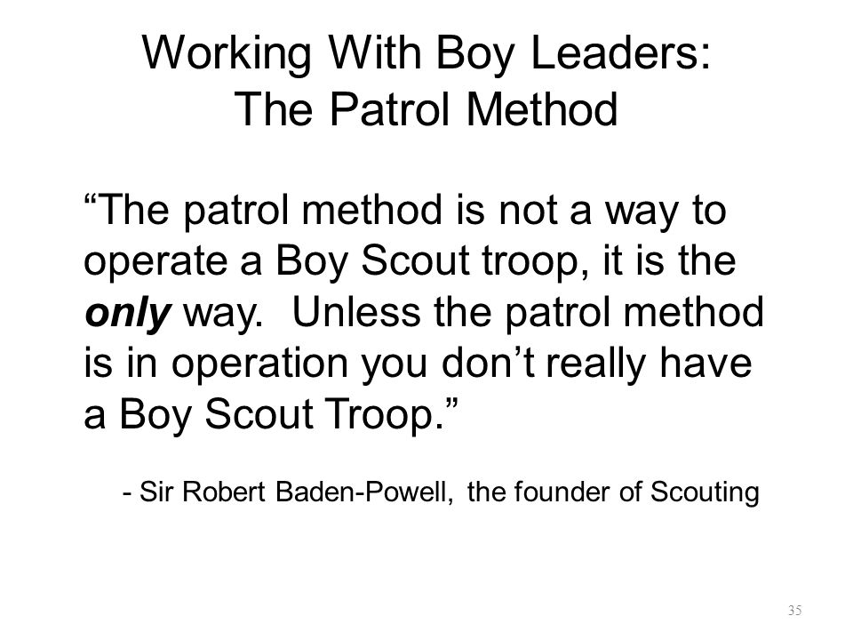 Working With Boy Leaders: The Patrol Method