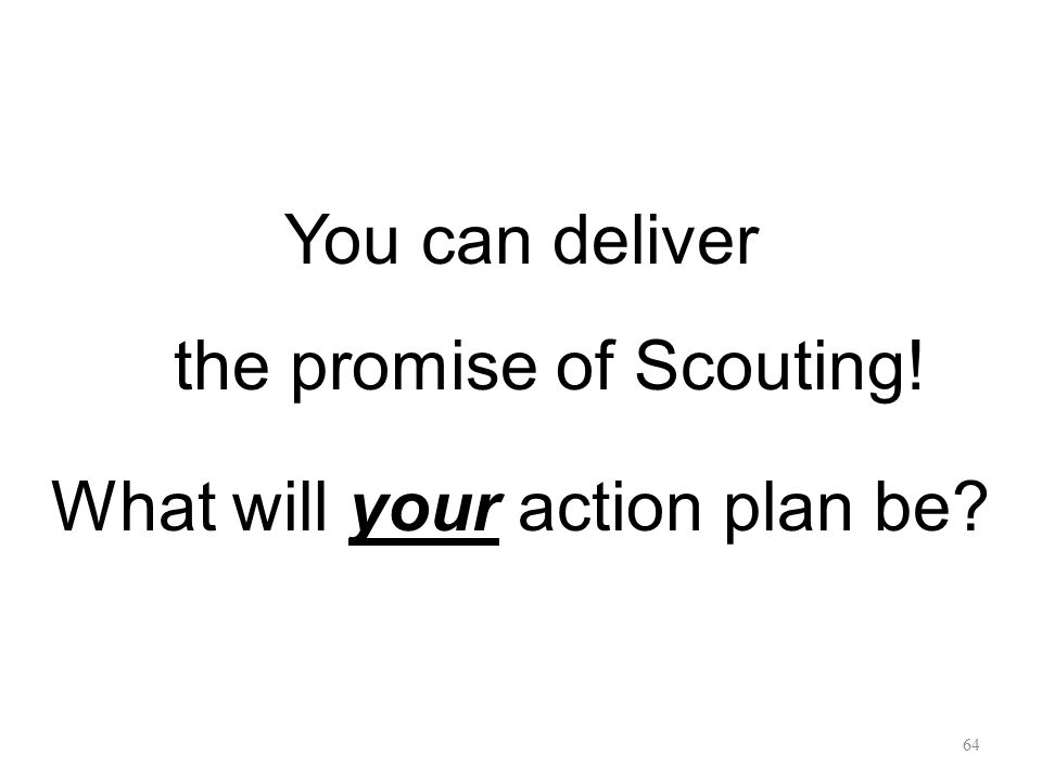 You can deliver the promise of Scouting! What will your action plan be
