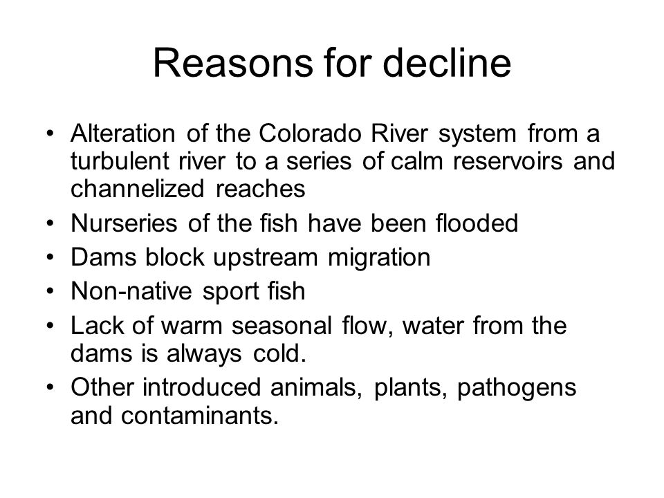 Reasons for decline Alteration of the Colorado River system from a turbulent river to a series of calm reservoirs and channelized reaches.
