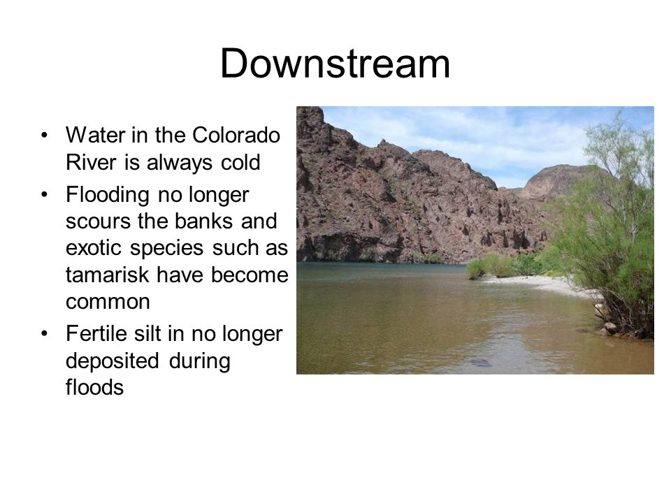Downstream Water in the Colorado River is always cold
