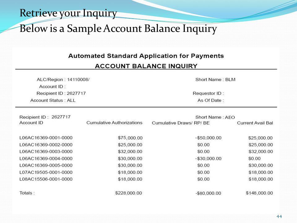 Retrieve your Inquiry Below is a Sample Account Balance Inquiry