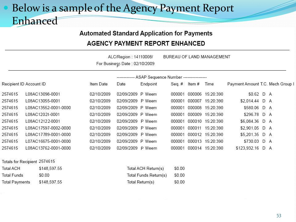 Below is a sample of the Agency Payment Report Enhanced