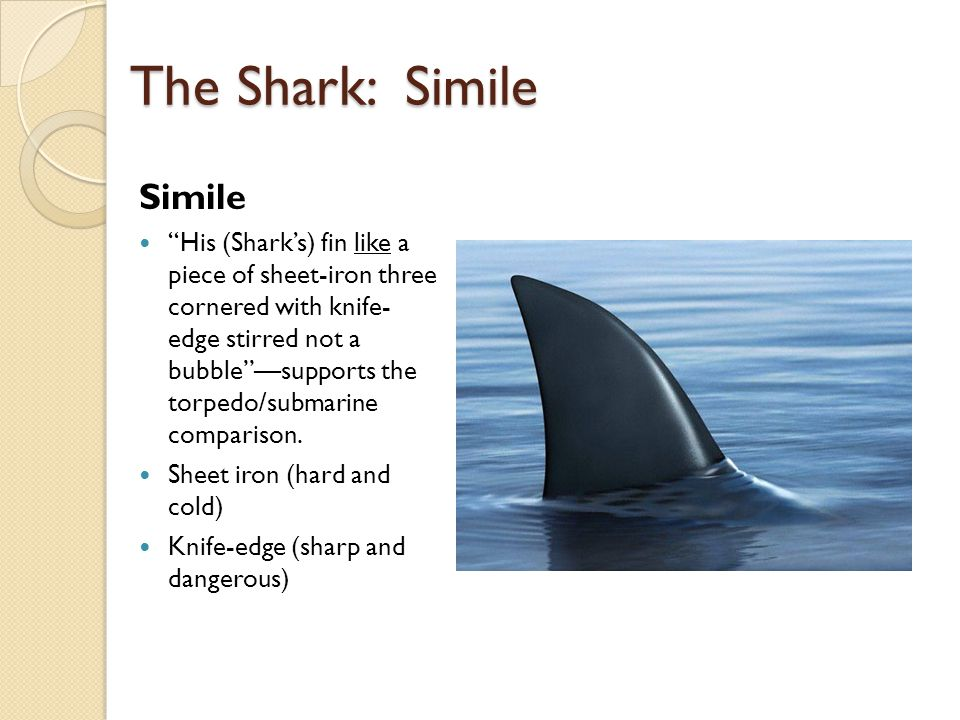 The Shark: Simile Simile