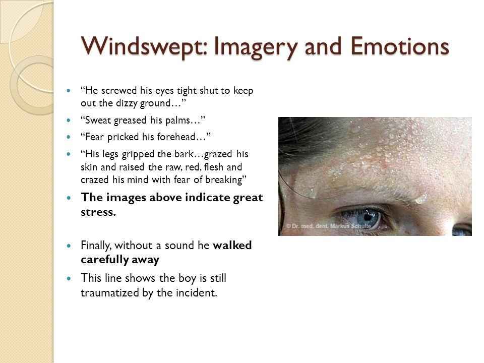 Windswept: Imagery and Emotions