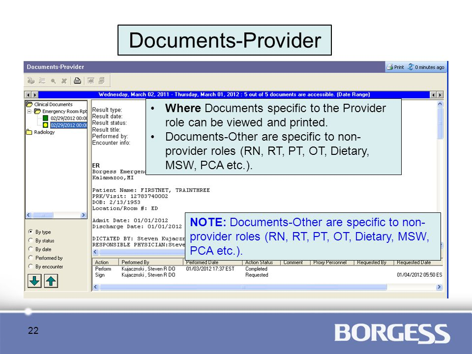 Documents-Provider Where Documents specific to the Provider role can be viewed and printed.