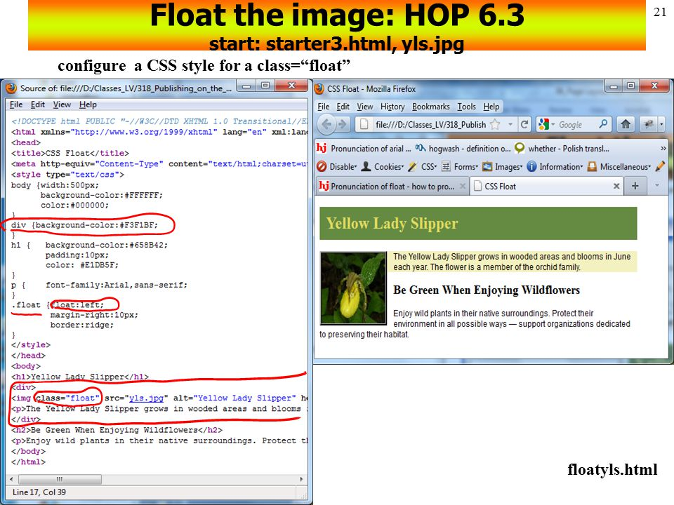 Float the image: HOP 6.3 start: starter3.html, yls.jpg