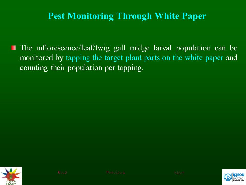 Pest Monitoring Through White Paper