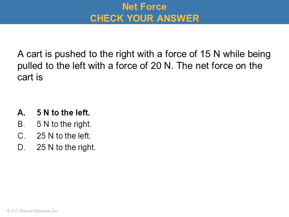 Net Force CHECK YOUR ANSWER