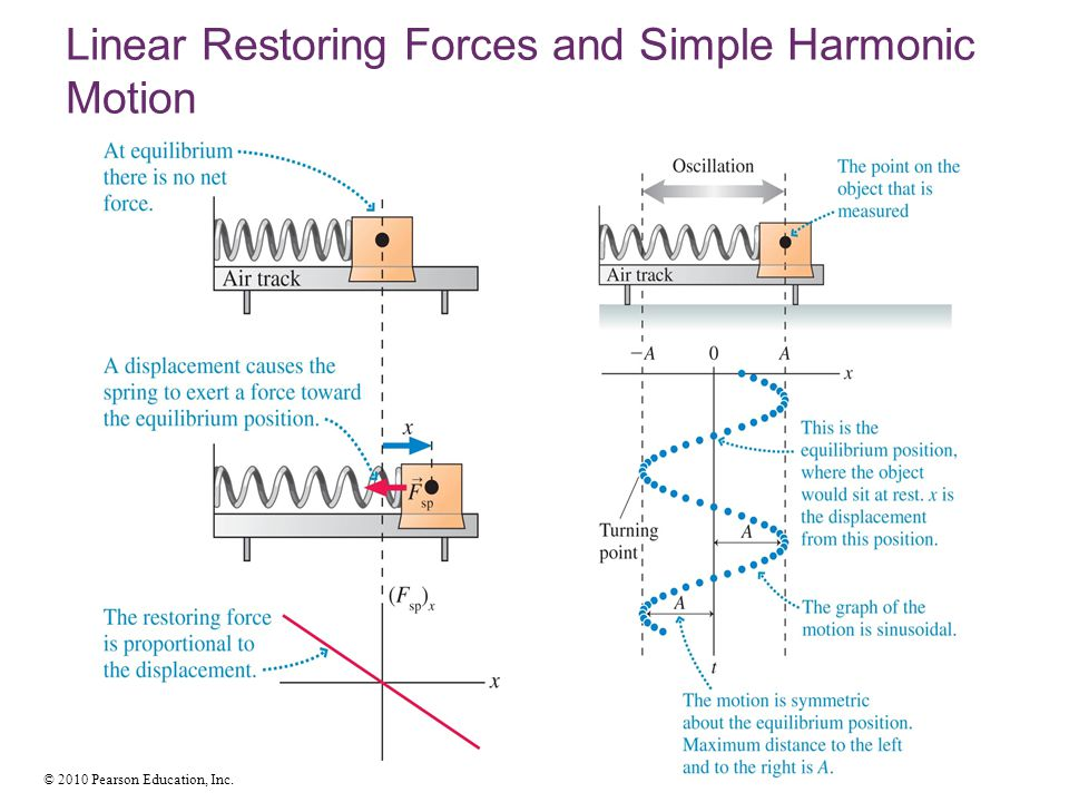Linear Restoring Forces and Simple Harmonic Motion