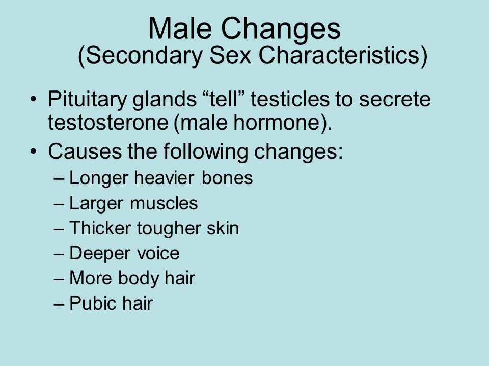 (Secondary Sex Characteristics)