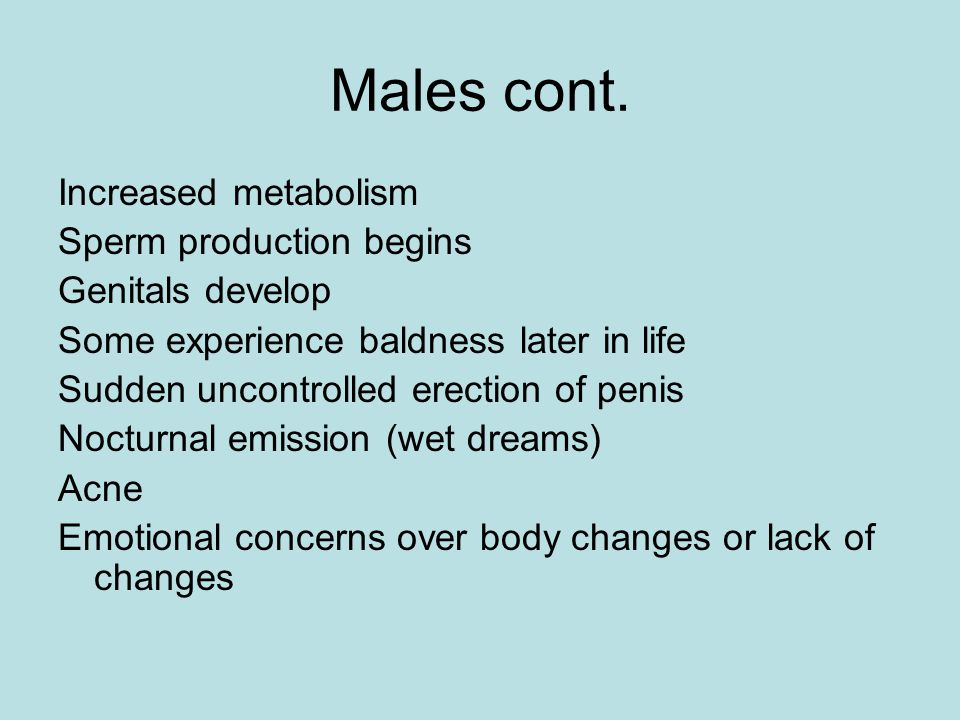 Males cont. Increased metabolism Sperm production begins