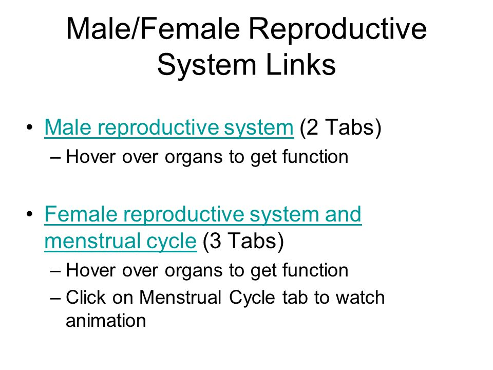 Male/Female Reproductive System Links