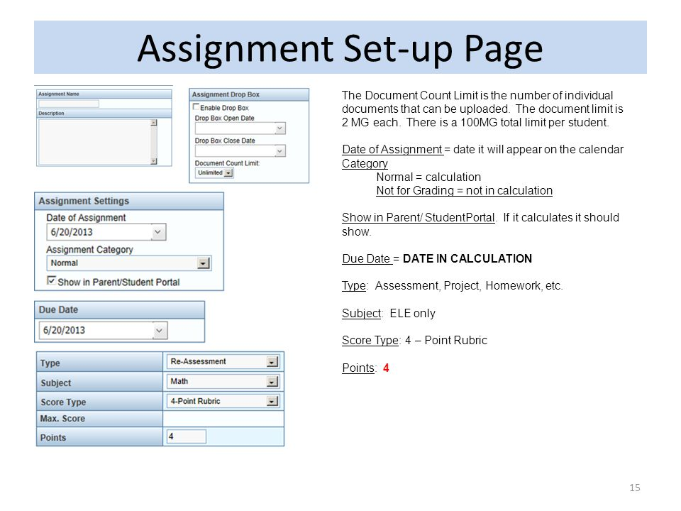 Assignment Set-up Page