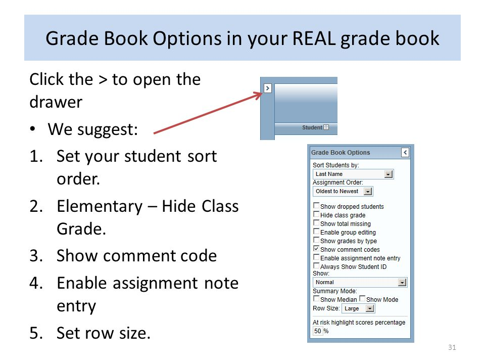 Grade Book Options in your REAL grade book