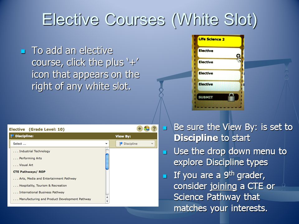 Elective Courses (White Slot)