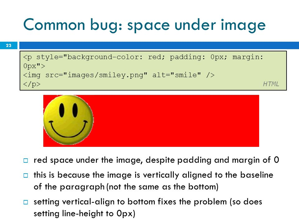 Common bug: space under image
