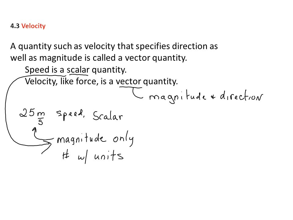 Speed is a scalar quantity.