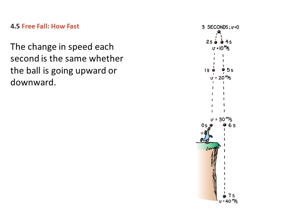 4.5 Free Fall: How Fast The change in speed each second is the same whether the ball is going upward or downward.