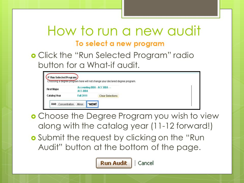 How to run a new audit To select a new program. Click the Run Selected Program radio button for a What-if audit.