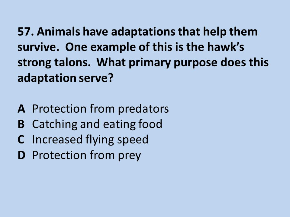 57. Animals have adaptations that help them survive