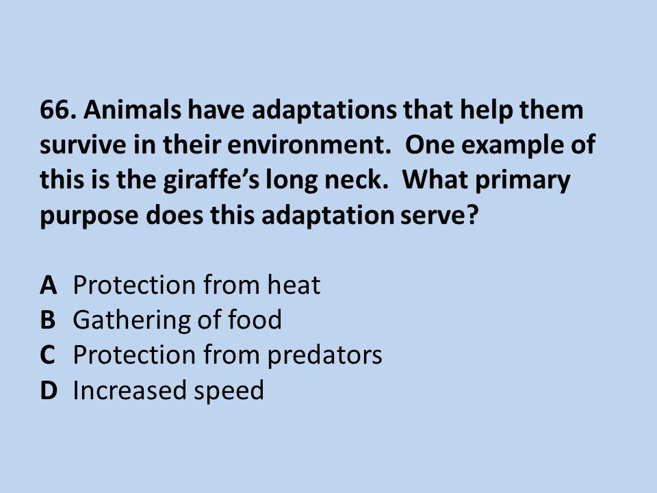 66. Animals have adaptations that help them survive in their environment.