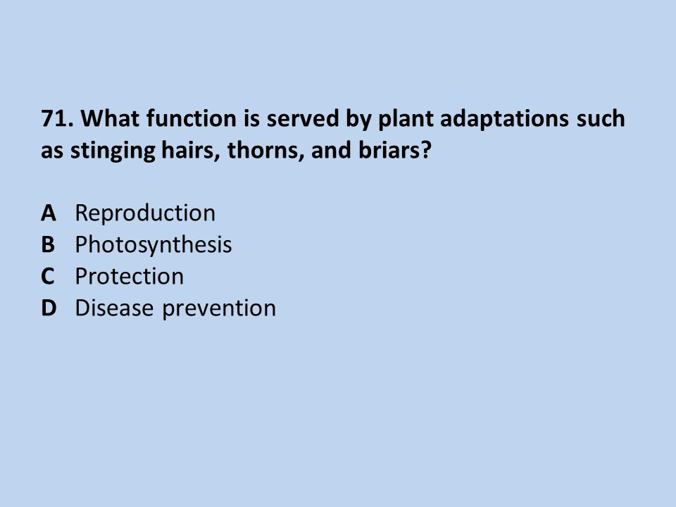 71. What function is served by plant adaptations such as stinging hairs, thorns, and briars.