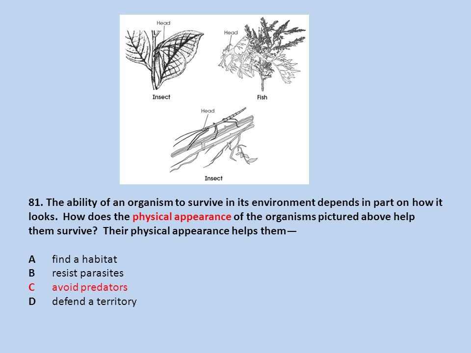 81. The ability of an organism to survive in its environment depends in part on how it looks.