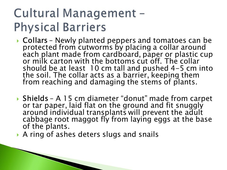 Cultural Management – Physical Barriers