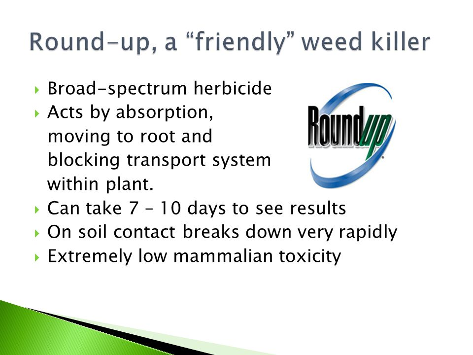 Round-up, a friendly weed killer