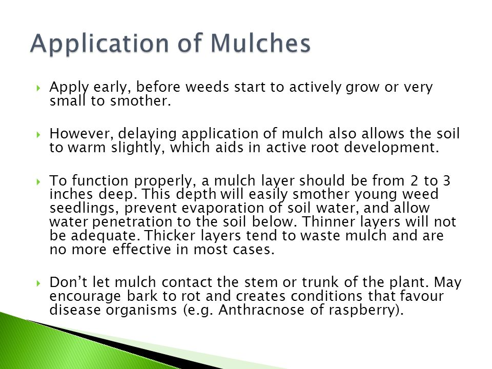 Application of Mulches