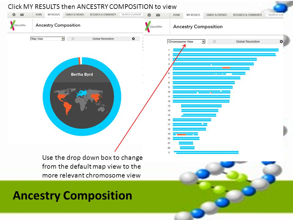 Click MY RESULTS then ANCESTRY COMPOSITION to view