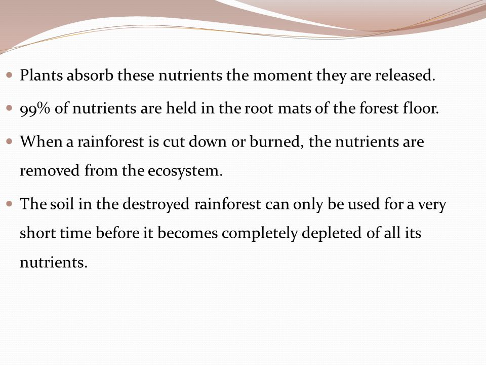 Plants absorb these nutrients the moment they are released.