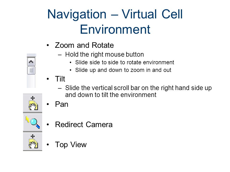 Navigation – Virtual Cell Environment