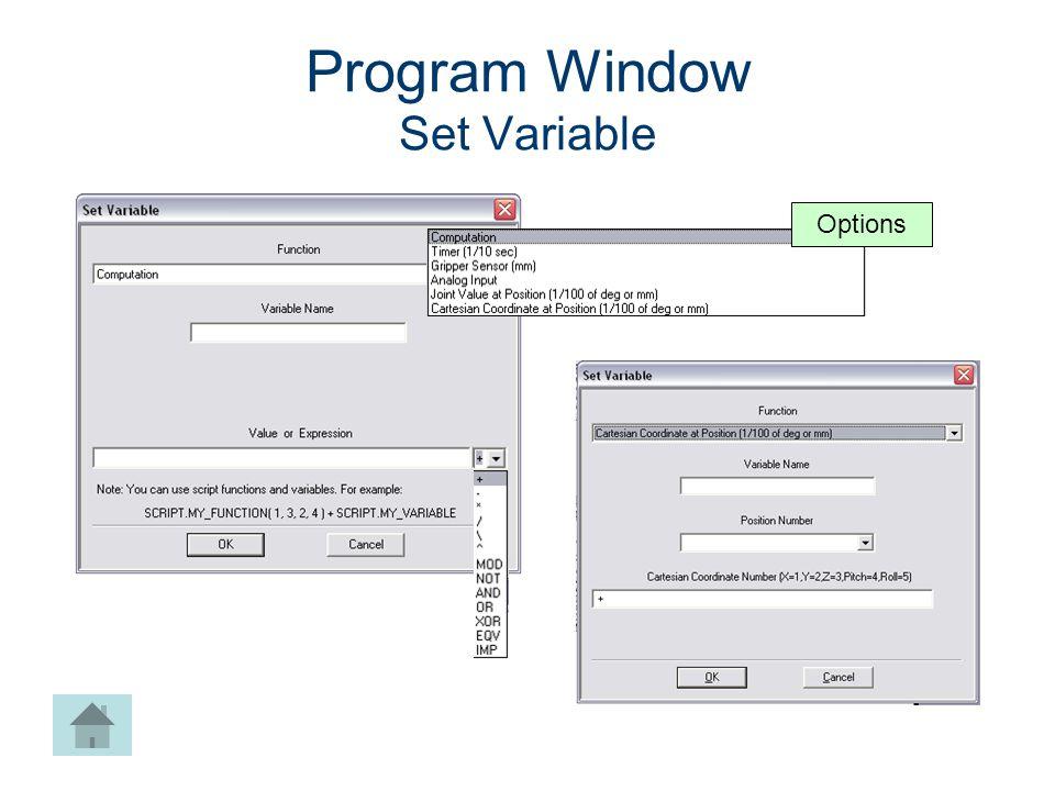 Program Window Set Variable