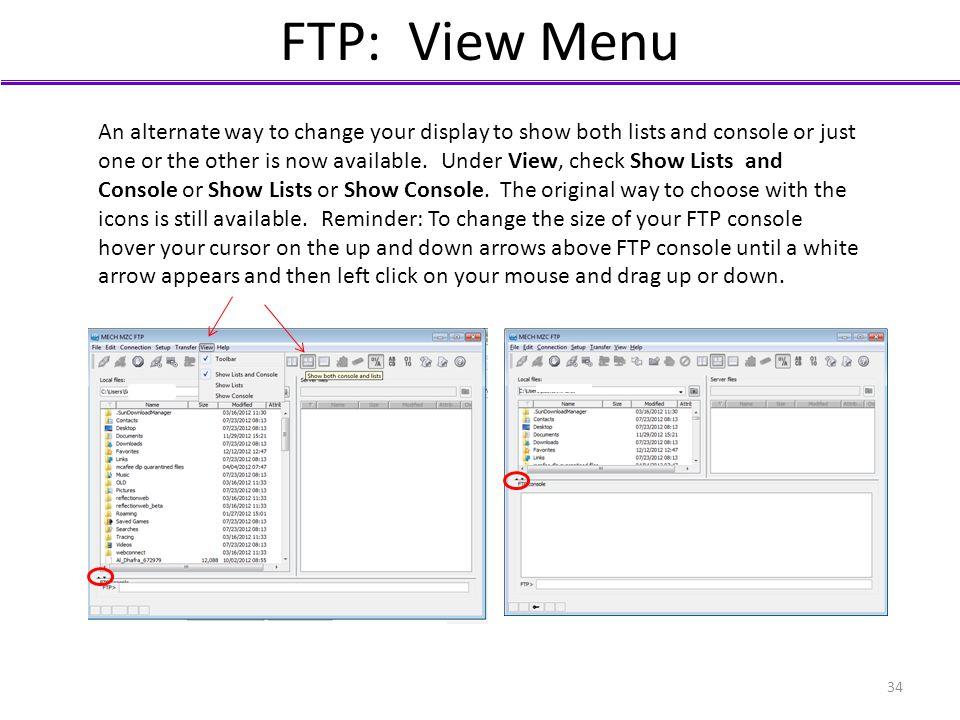FTP: View Menu