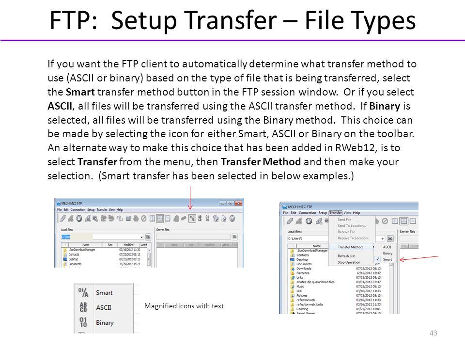 FTP: Setup Transfer – File Types