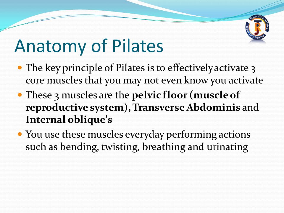 Anatomy of Pilates The key principle of Pilates is to effectively activate 3 core muscles that you may not even know you activate.