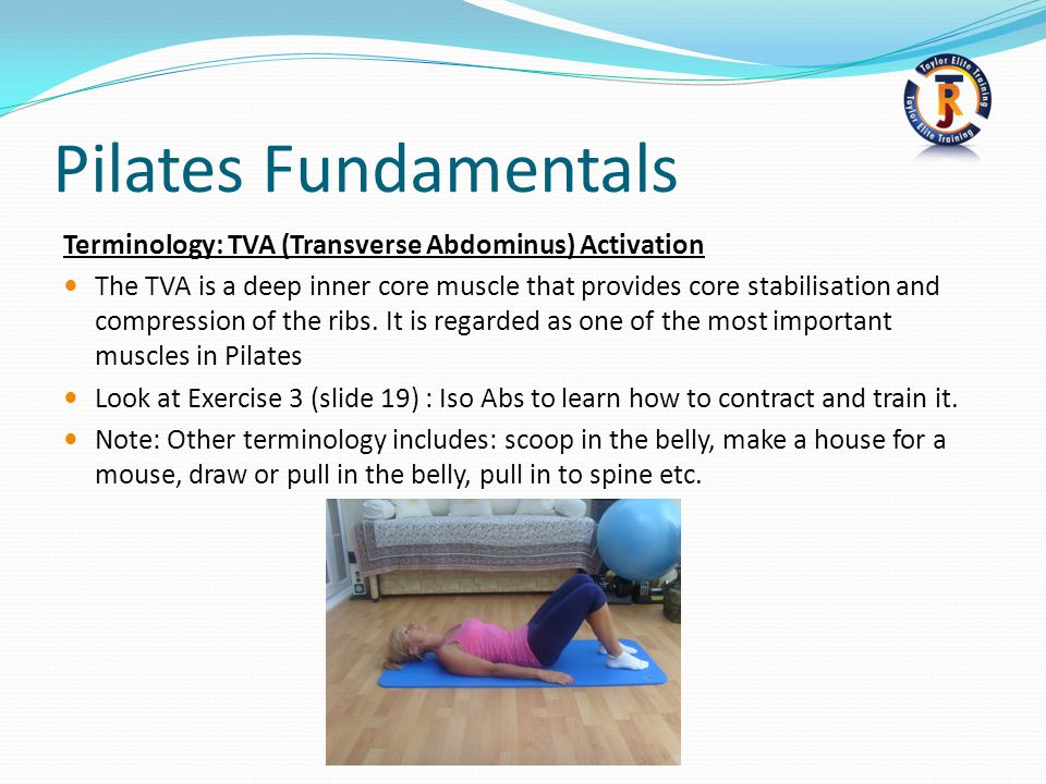 Pilates Fundamentals Terminology: TVA (Transverse Abdominus) Activation.