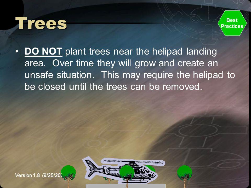 Trees Best. Practices.