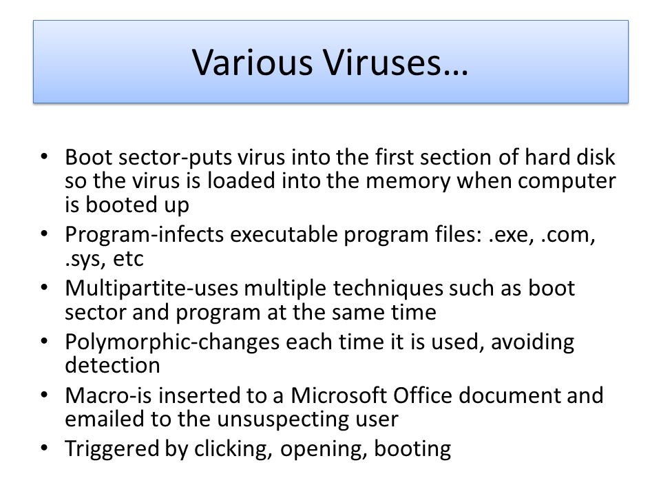 Various Viruses… Boot sector-puts virus into the first section of hard disk so the virus is loaded into the memory when computer is booted up.